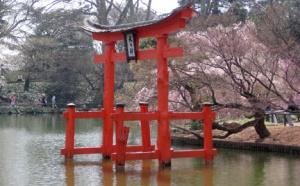 Tori Gate in Pond
