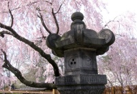 Japanese Stone Lantern in Pond