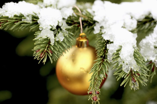 129842228 gold christmas ball on snowy fir tree - Twas The Night Before Christmas Decorating Ideas