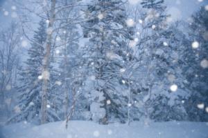 95497858-falling-snowflakes-near-asahi-dake-spa-gettyimages