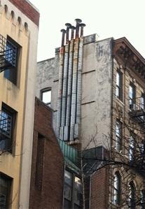 UrbanMushrooms