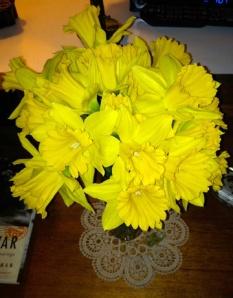 Daffodils1