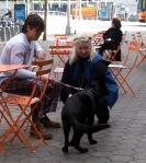 Myotai+Dog2