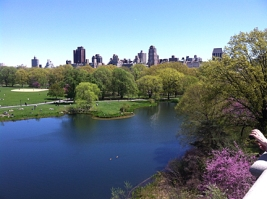 Pond and Upper East Side Skyline