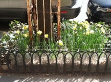 4-Bars+Flowers