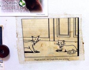 Cartoon from Beth's fridge (sooooo true!)