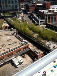 Highline (green space) from terrace